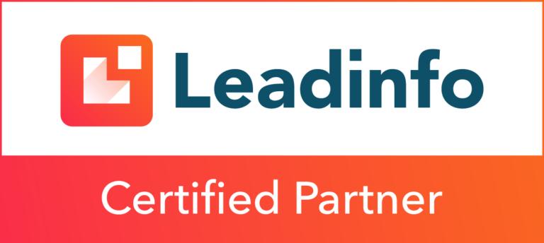 Leadinfo leadgeneratie Gelderland Ulft Online Marketing Accu